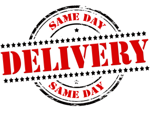 Same Day Delivery SDD Taggleiche Lieferung - shutterstock 274008539