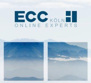 ECC Studie SAP Hybris